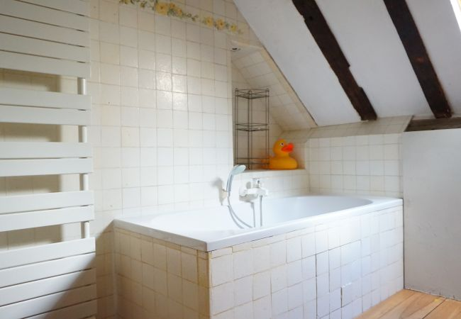 Appartement à Paris - rue du Bourg Tibourg 75004 PARIS - 204009