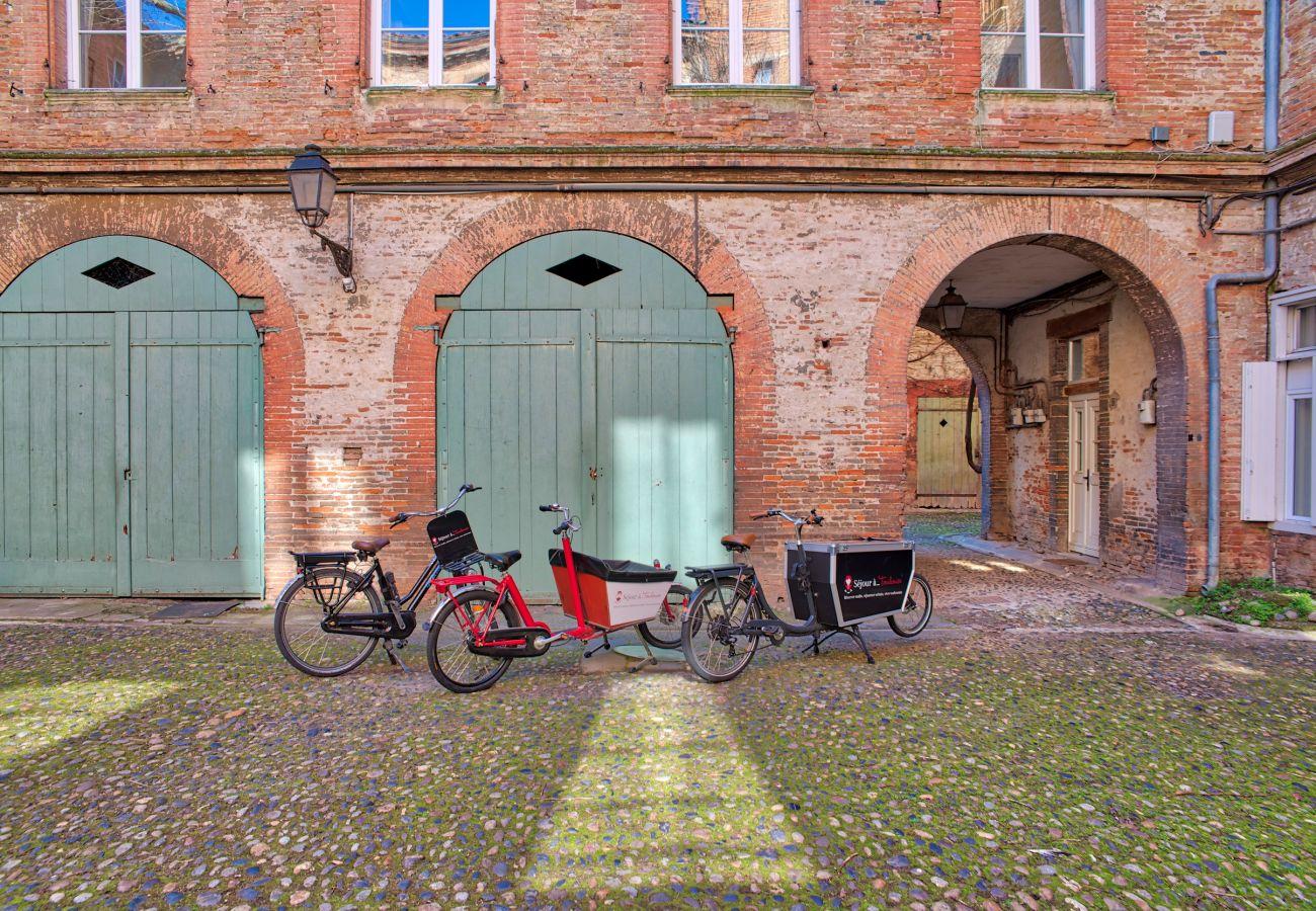 Appartement à Toulouse - CANAL DU MIDI Terrasse Parking Hyper Centre